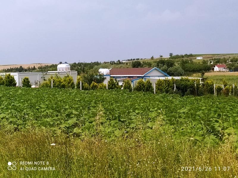 Lüleburgaz Evrensekiz barajda satılık 750m2 arsa