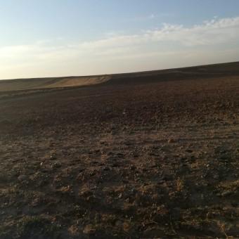 Lüleburgaz Tatarköyde Satılık Tarla