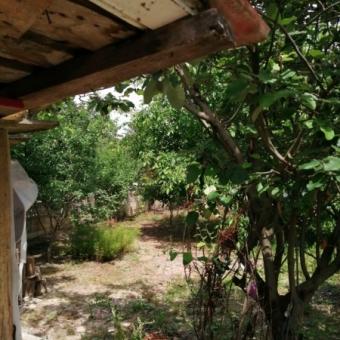 Lüleburgaz Sarıcaali köyünde Satılık Arsa
